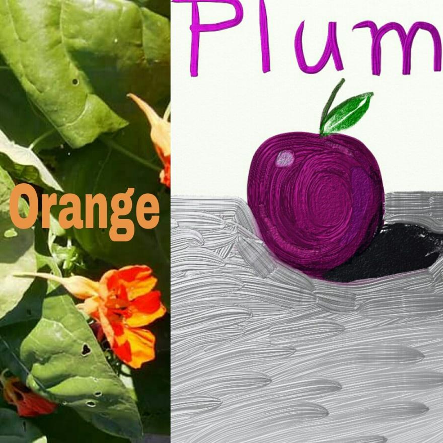 PicsArt_1535991893419
